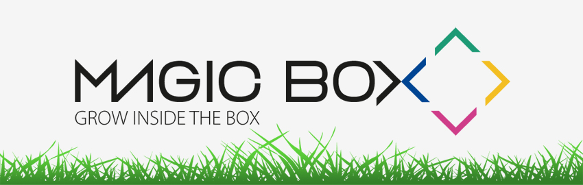 magic-box-postal-con-semillas-logo-magicbox-adnstudio