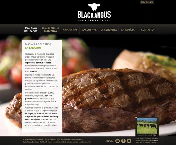 imagen-de-marca-branding-concepto-web-degustar-comunicacion-de-producto-empresa-black-angus-branding-adnstudio-adn-studio