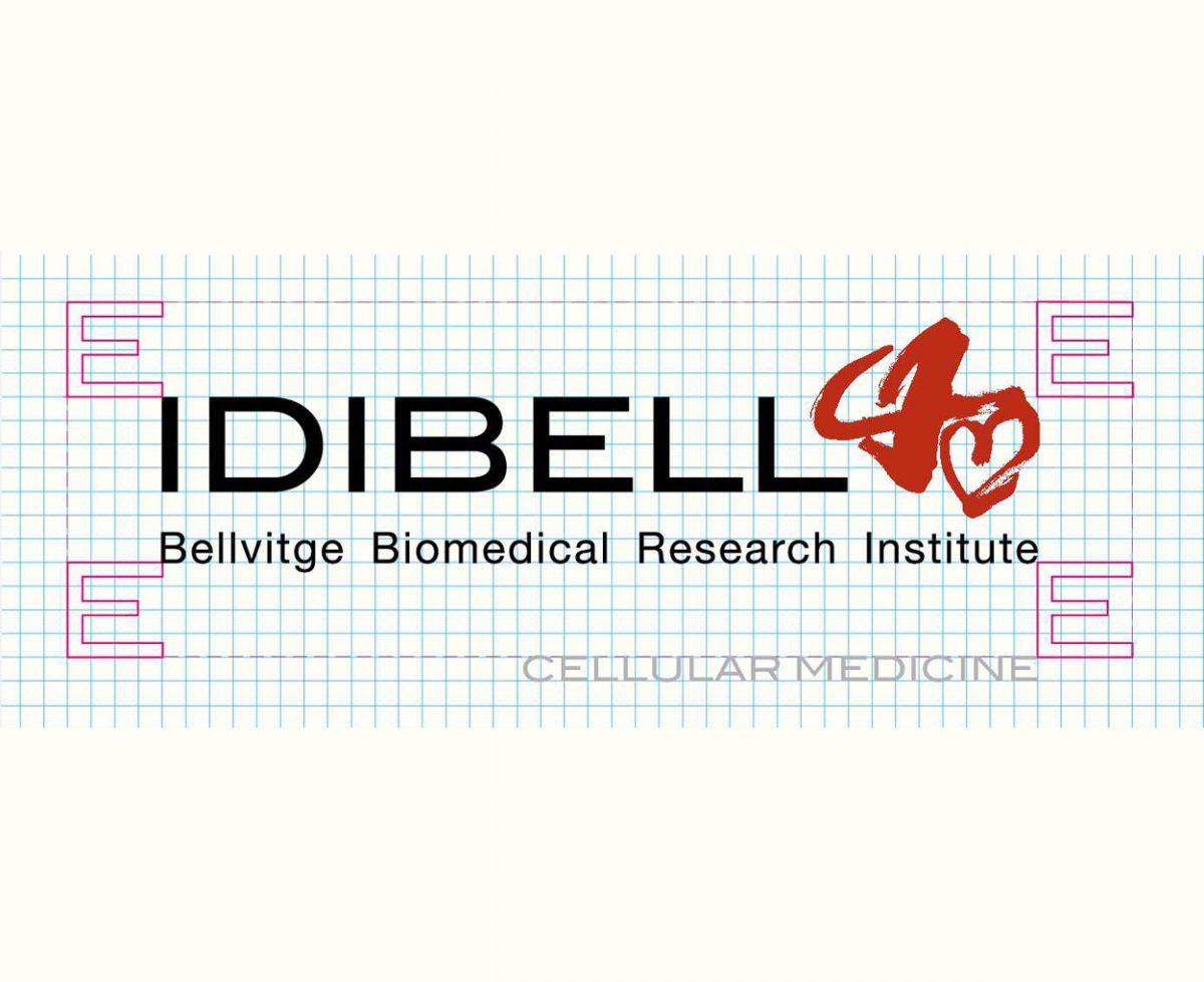 Manual de identidad corporativa para el sector sanitario y rediseño del logotipo de Idibell